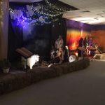 the-christmas-garden-2