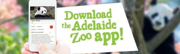 download the Adelaide Zoo App