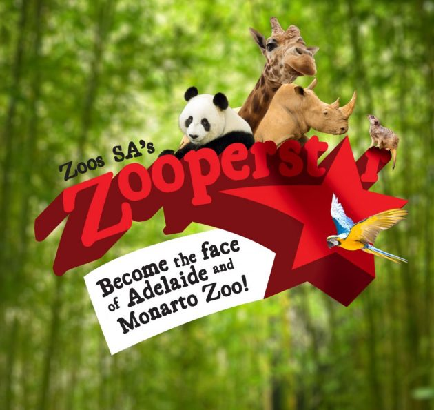 Zoos SA's Zooperstar Competition: Become the face of Adelaide Zoo and Monarto Zoo
