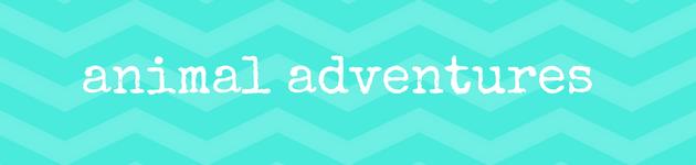 animal-adventures-summer-school-holiday adelaide
