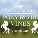 Pony in the VInes Tomich Winery