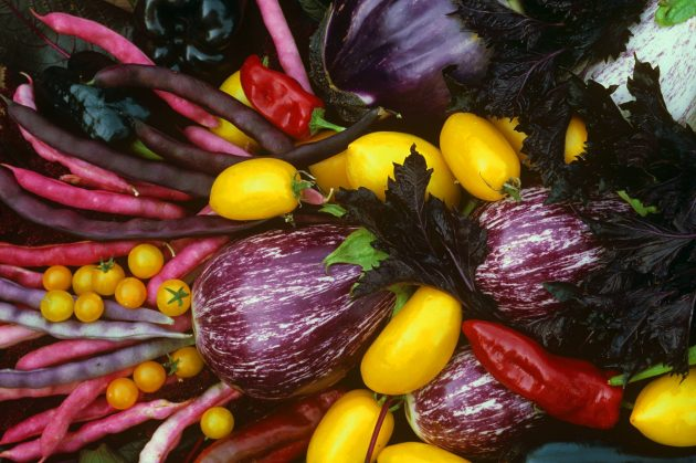 Heirloom Weekend at the Adelaide Botanic Garden