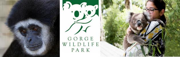 Easter School Holidays Adelaide Gorge Wildlife Park
