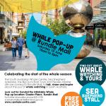 Whale-Season-Rundle-Mall-2017