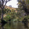 onkaparinga-river-trees-parks sa image