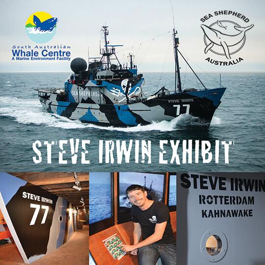 Sea Shepherd School Holiday Talks