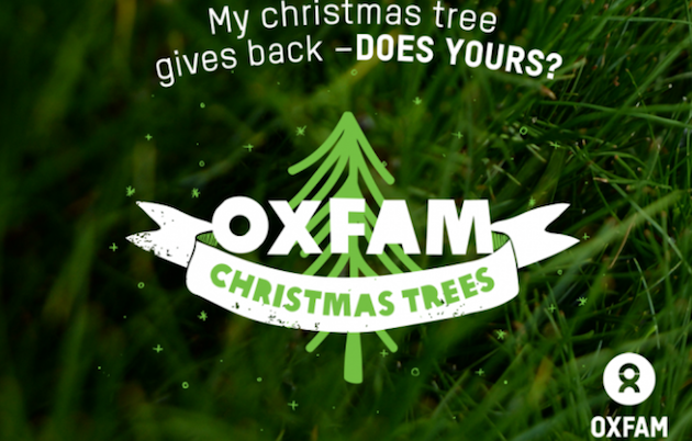 Open For Christmas Orders.Buy A Real Christmas Tree Oxfam Christmas Trees Orders