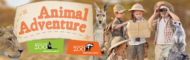 Adelaide Zoo Summer School Holiday Activities
