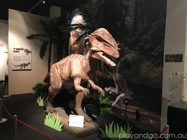 Museum Dinosaur Revolution