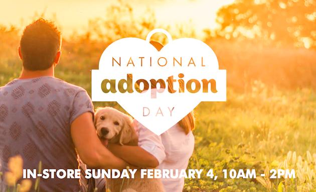 Pet Adoption Day at PETstock stores