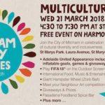 multicultural fair mitcham