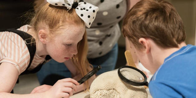 autism-friendly family morning science week
