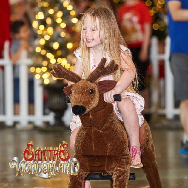santas wonderland reindeers