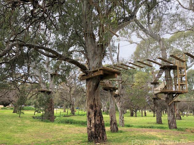 TreeClimb Adelaide aeria