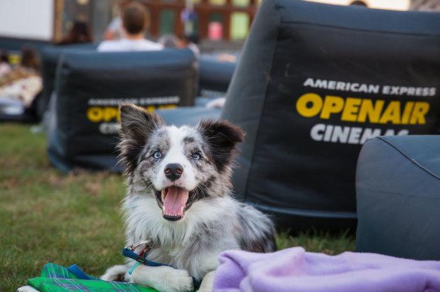 American Express Openair Cinemas | Riverbank Lawn | 23 Nov