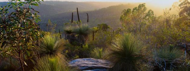 parra wirra conservation park