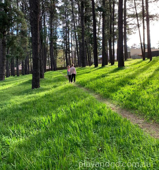 Pine Reserve Aberfoyle Park