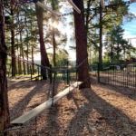 Pine Reserve Playground, Aberfoyle Park, Things to do with kids in Adelaide