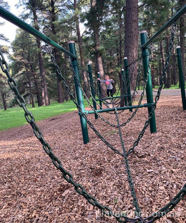 Pine Reserve in Aberfoyle Park
