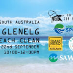 glenelg beach clean