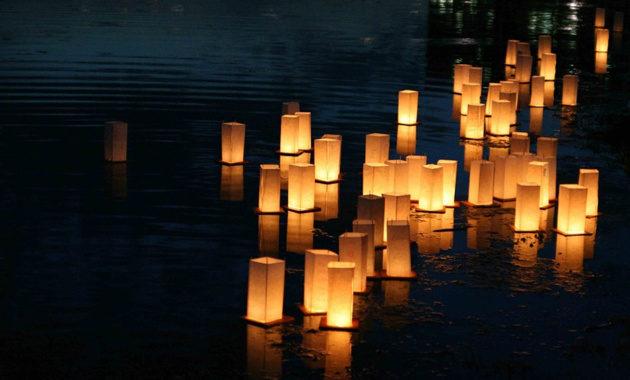 lights fest adelaide