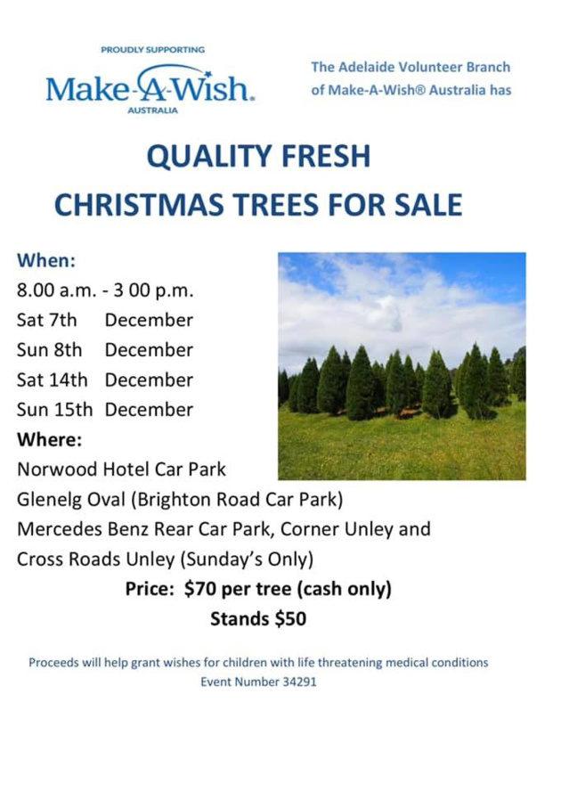 make a wish christmas trees