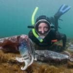 spots to snorkel South Australia