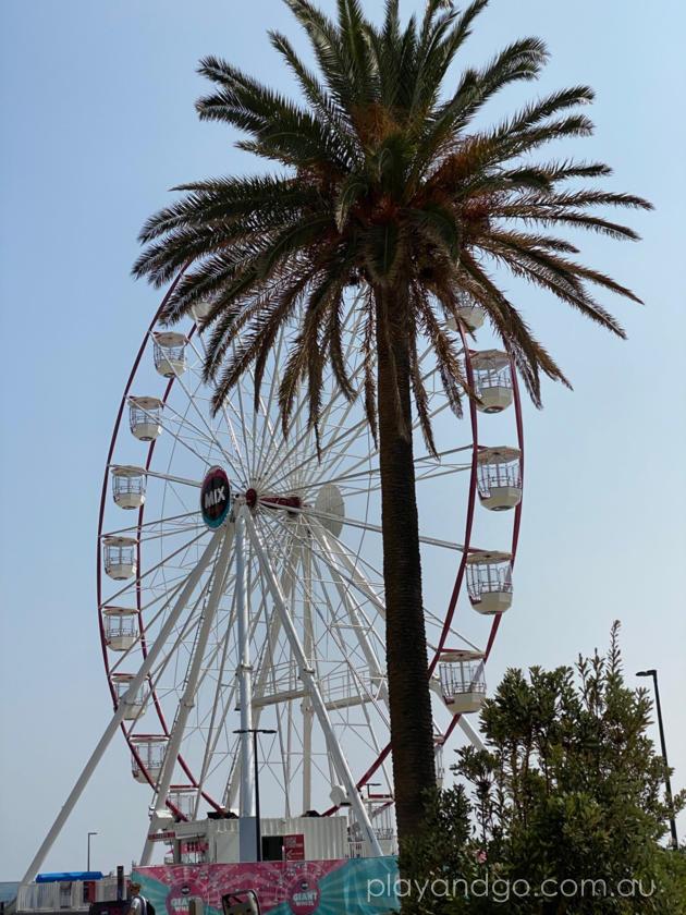 glenelg giant ferris wheel