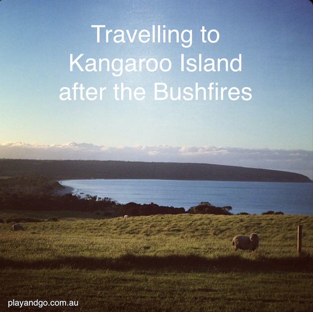 Kangaroo Island: Kangaroo Island Needs Our Support