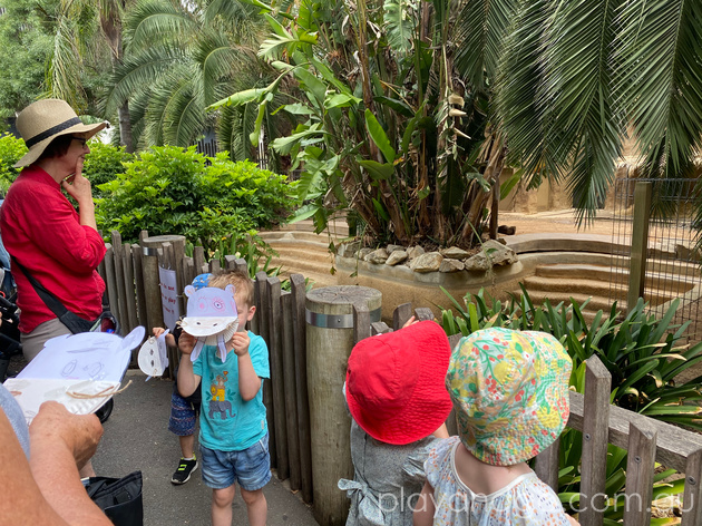 Adelaide Zoo A to Zoo session review by Susannah Marks