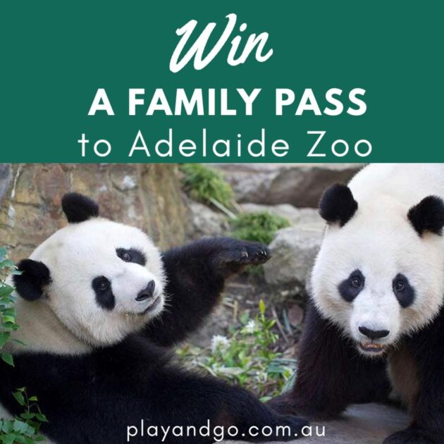 Adelaide Zoo win a family pass
