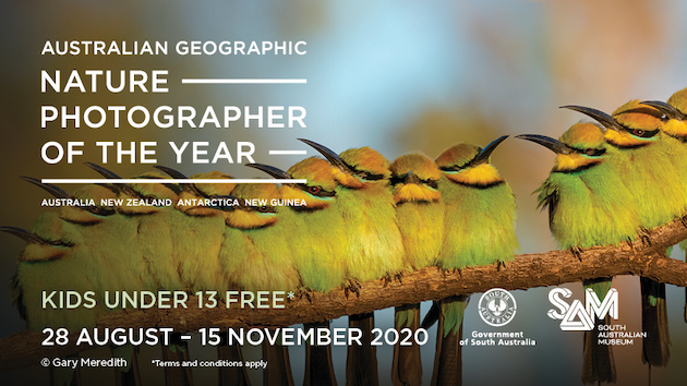 Nature Photographer of the Year SA Museum