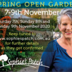 spring open garden sophies patch