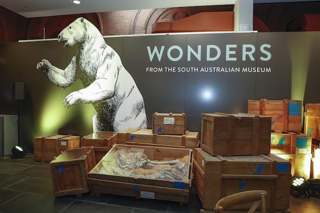 Wonders as museum