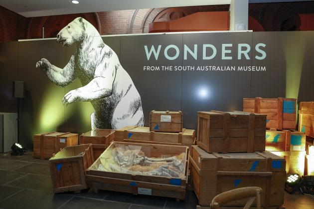 Wonders South Australian museum