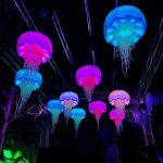 Light Creatures Adelaide Zoo