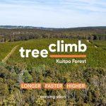 treeclimb kuitpo forest