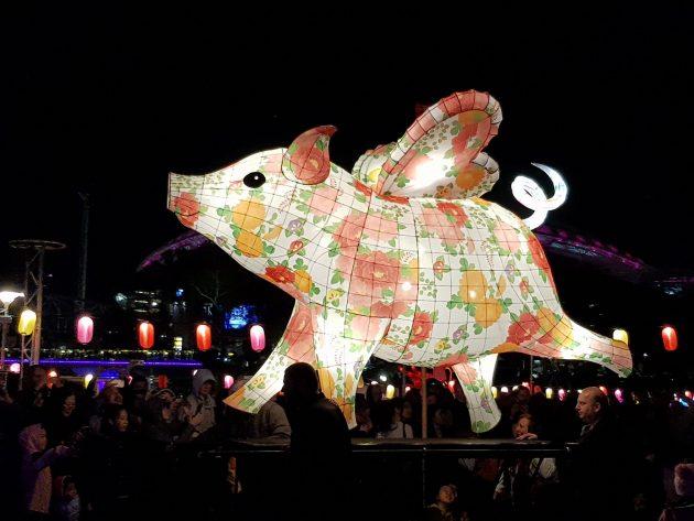 moon lantern trail ozasia festival Adelaide